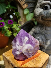 Chevron Amethyst Crystal point