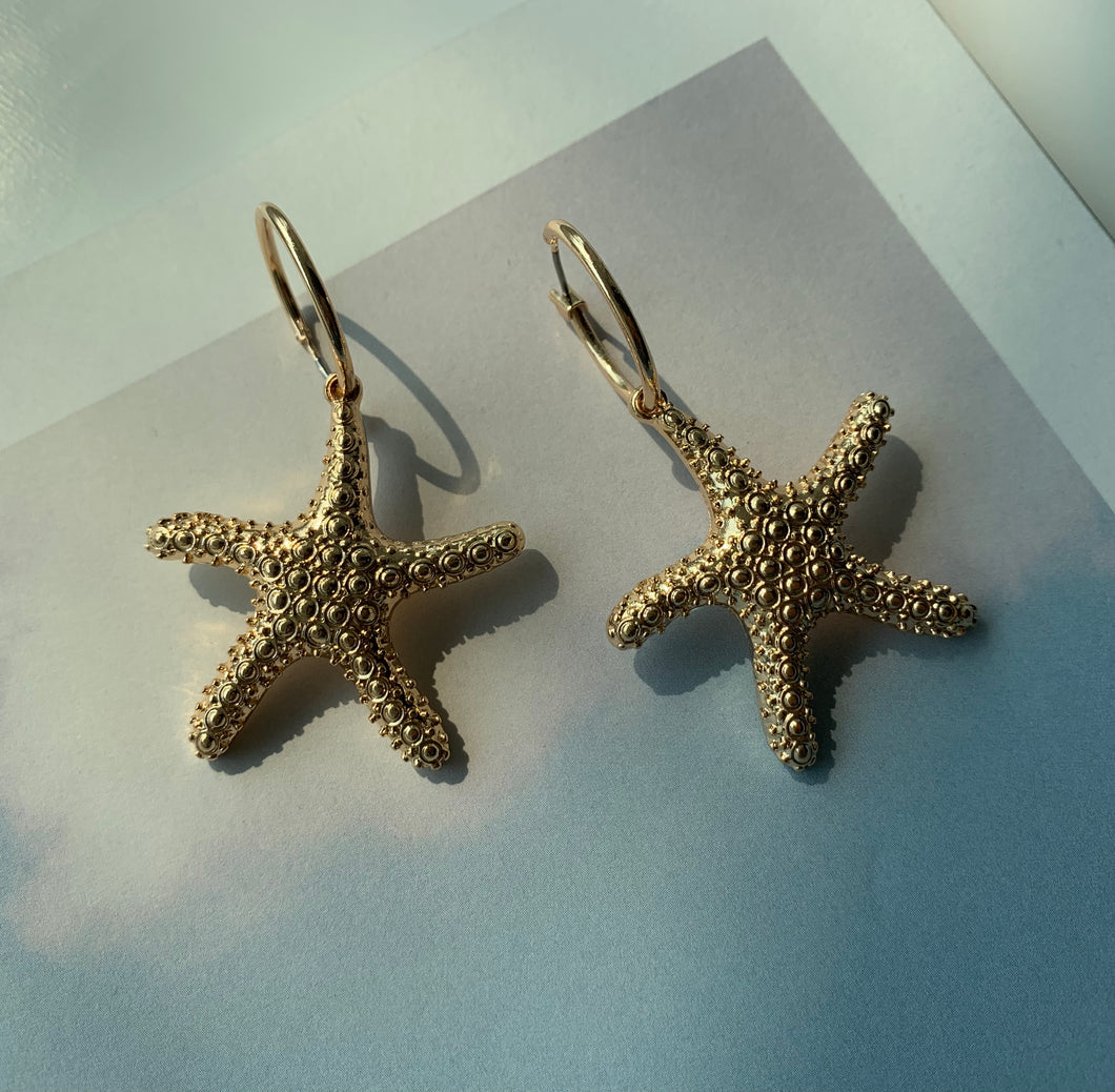 Calista Sea Star Earrings - Twice Shy