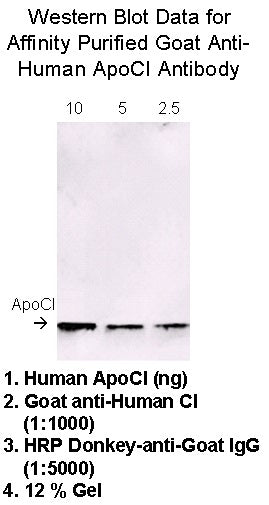 [A08] Goat Anti-Human Apolipoprotein CI Polyclonal Antibody, Academy Bio-medical Company, Inc.