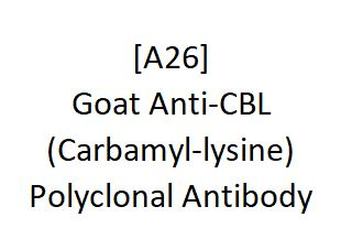 [A26] Goat Anti-CBL (Carbamyl-lysine) Polyclonal Antibody, Academy Bio-medical Company, Inc.