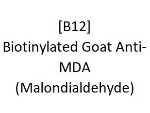 [B12] Biotinylated Goat Anti-MDA (Malondialdehyde), Academy Bio-medical Company, Inc.