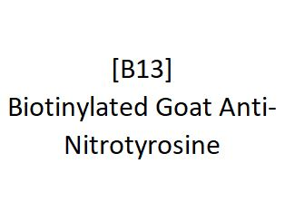 [B13] Biotinylated Goat Anti-Nitrotyrosine, Academy Bio-medical Company, Inc.