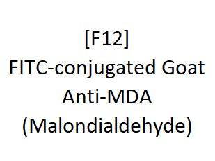 [F12] FITC-conjugated Goat Anti-MDA (Malondialdehyde), Academy Bio-medical Company, Inc.