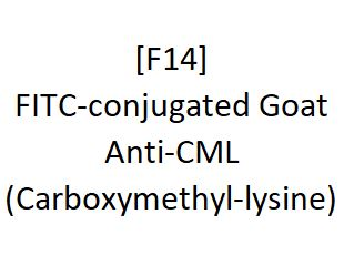 [F14] FITC-conjugated Goat Anti-CML (Carboxymethyl-lysine), Academy Bio-medical Company, Inc.