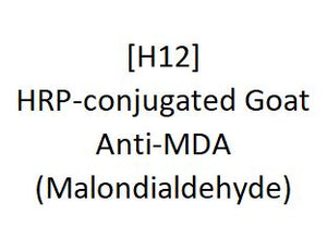 [H12] HRP-conjugated Goat Anti-MDA (Malondialdehyde), Academy Bio-medical Company, Inc.