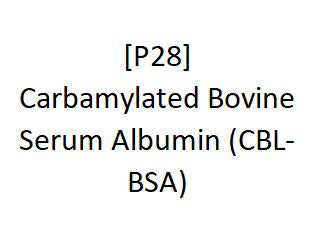 [P28] Carbamylated Bovine Serum Albumin (CBL-BSA), Academy Bio-medical Company, Inc.