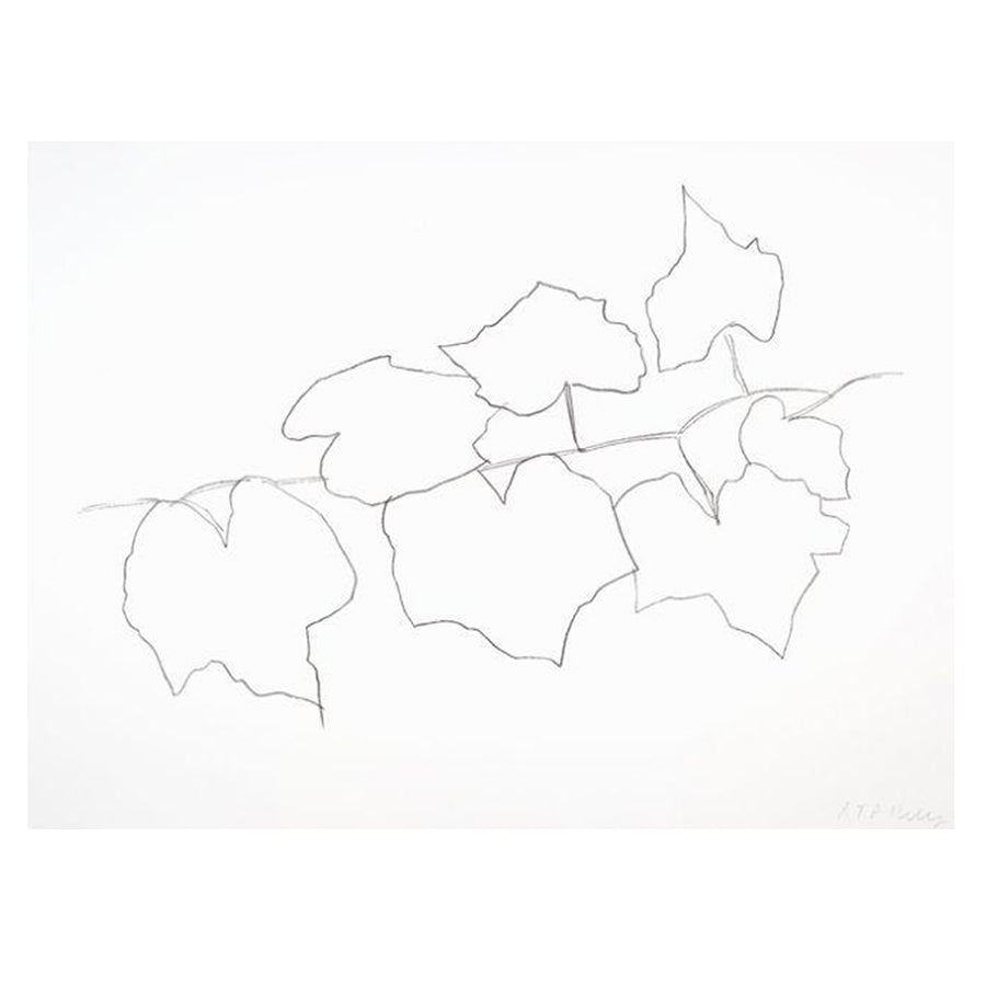 "Ellsworth Kelly ""Wild Grape Leaves II"" Print"