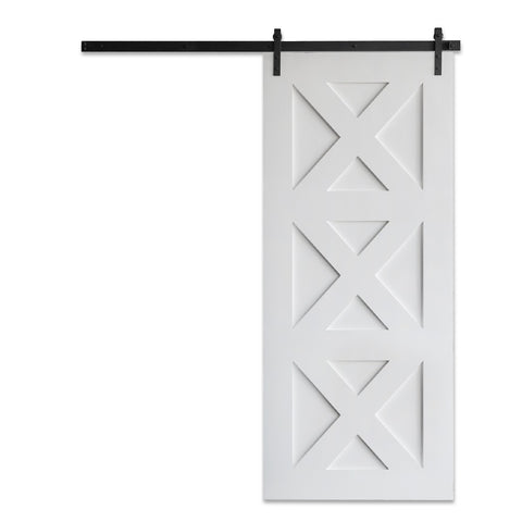 Contemporary Panel Barn Door