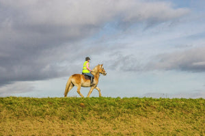 Woman on Horse - Lincolnshire, Landscape, C-Type