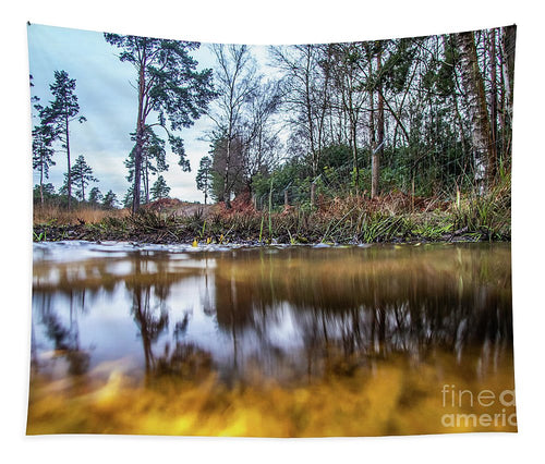 View Across Water And Under Water To Forest Scene - Tapestry - RW Jemmett