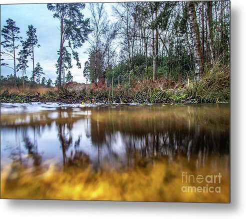 View Across Water And Under Water To Forest Scene - Metal Print - RW Jemmett