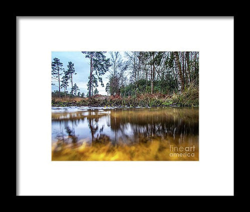 View Across Water And Under Water To Forest Scene - Framed Print - RW Jemmett