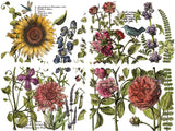 IOD Botanist's Journal Decor Transfer Pad, 4 12x16 sheets