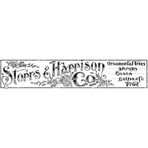 "IOD Storrs and Harrison Decor Transfer 12"" x 60"""