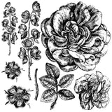 "IOD Lady of Shallot Decor Stamps 12"" x 12"""