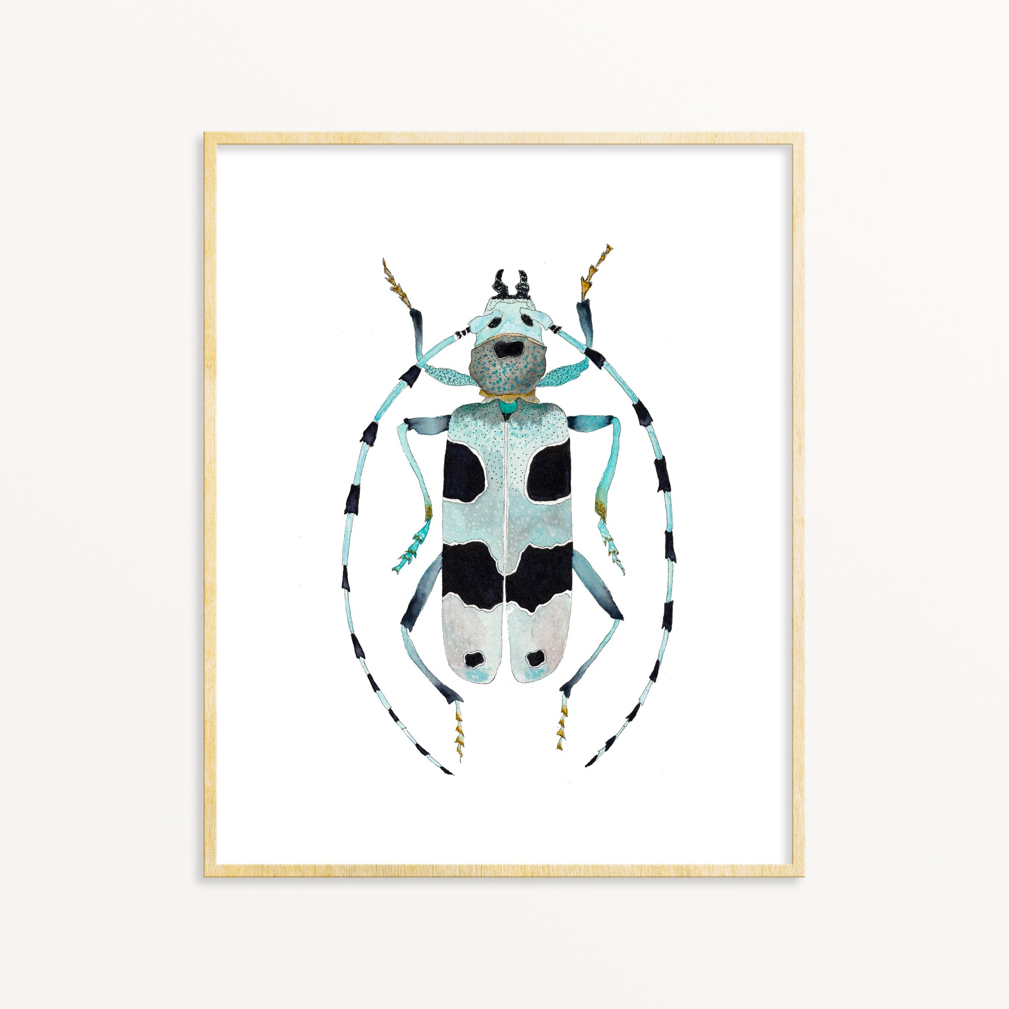 Beetle No. 5