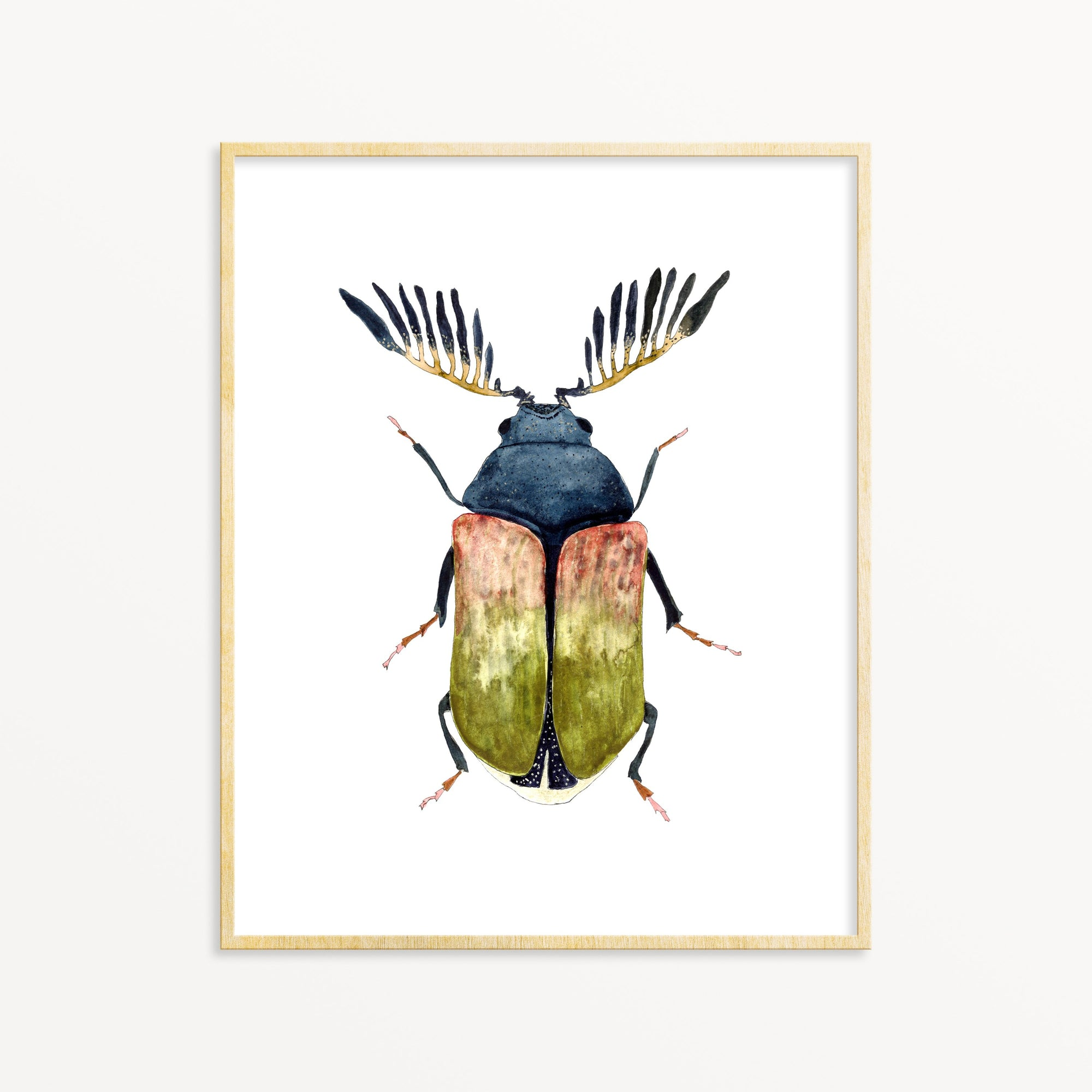 Beetle No. 7