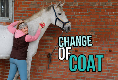 Change of coat - Tips and Tricks