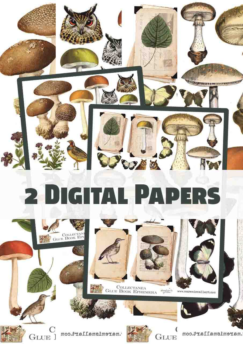 2 Pages - Collectanea Vintage Digi Paper set 1