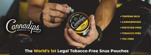 CannaDips Snuff tobacco banner