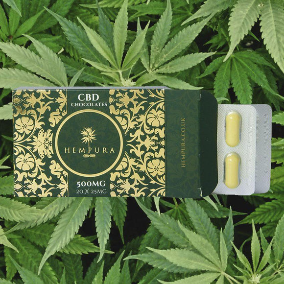 Hempura - Hempura 1000mg Sativa Hemp CBD White Chocolates (20)