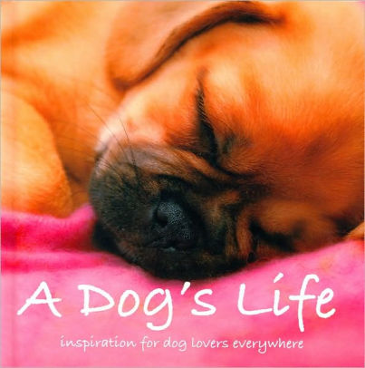 A Dog's Life: Inspiration For Dog Lovers Everywhere