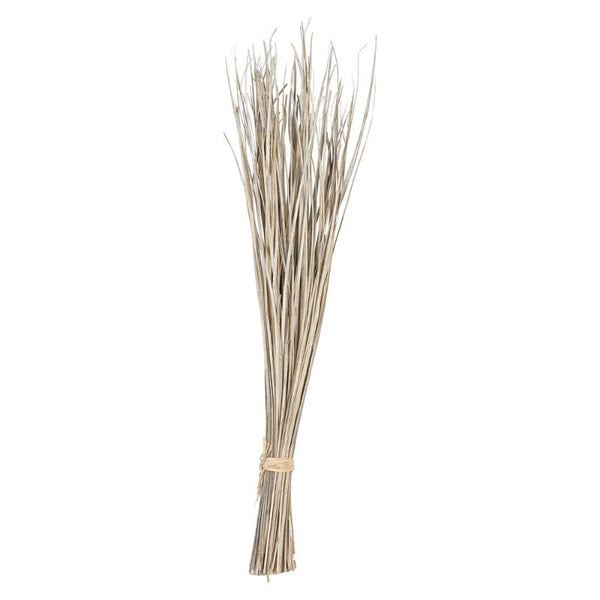 "Dried Natural Date Palm Leaf Bunch (36"")"