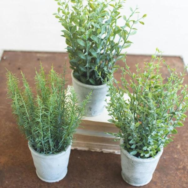 Faux Herbs in White Cement Pot