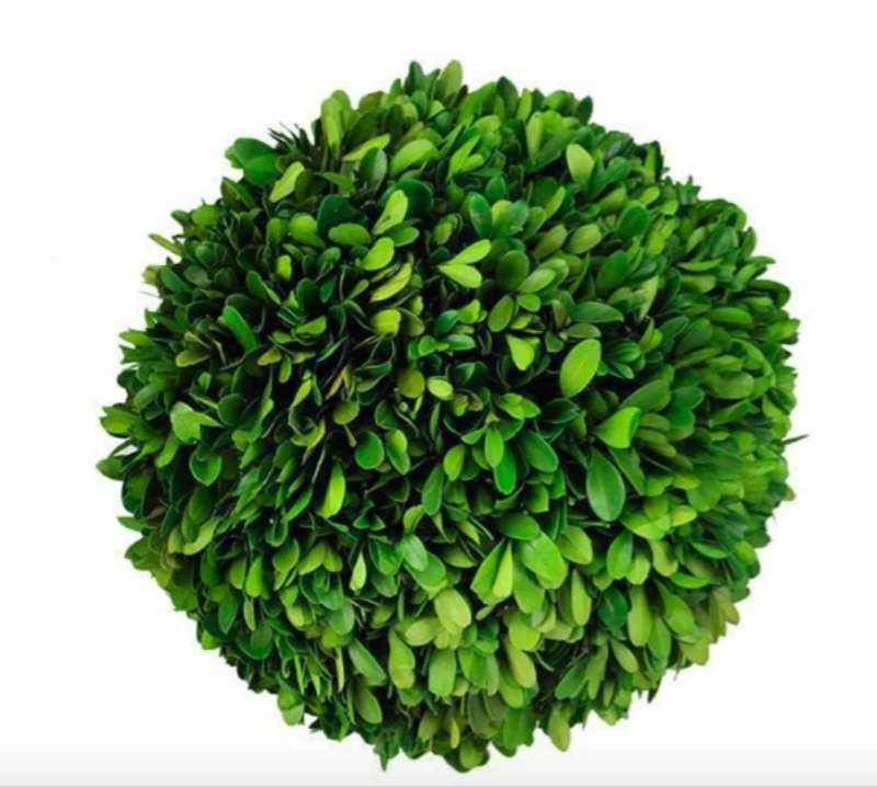 "6"" Boxwood Ball"