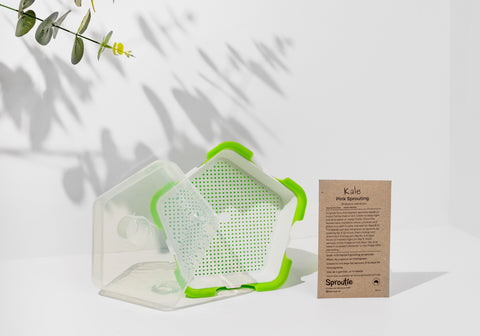 Sproutie sprouting container and sprouts seed packet