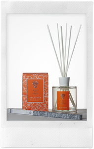 Dianthus Room Diffuser, 100ml