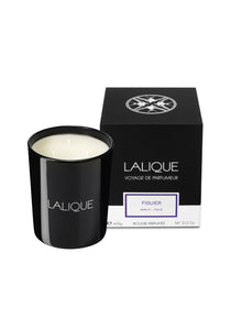 Fig Candle, Large