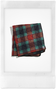 To Kill A Mockingbird Plaid Dog Blanket, Small