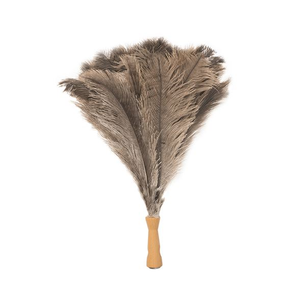 Extendable Ostrich Feather Duster