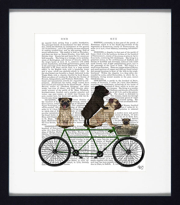 Dogs on Tandems VI