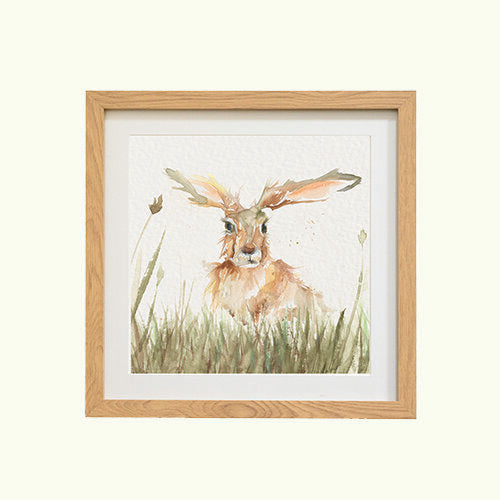 Solo Hare Mounted Print