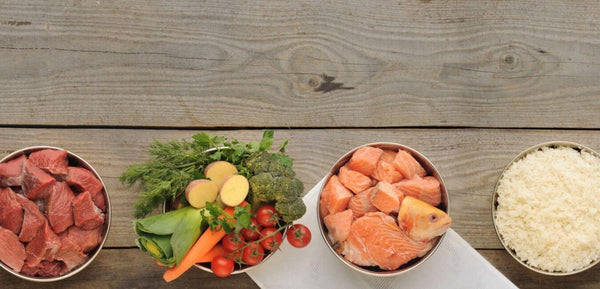 different dog diet raw meat vegetables fish rice