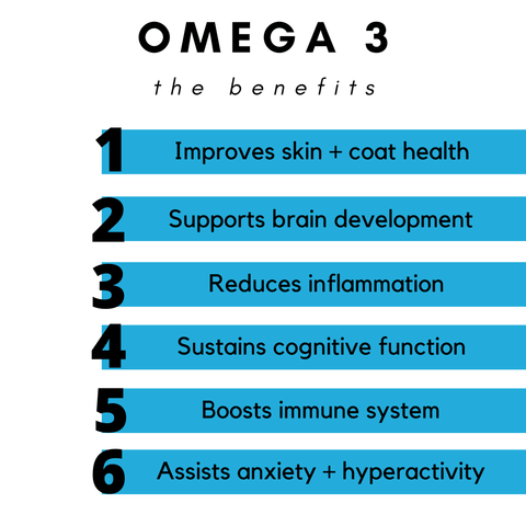 benefits of omega 3 in dogs