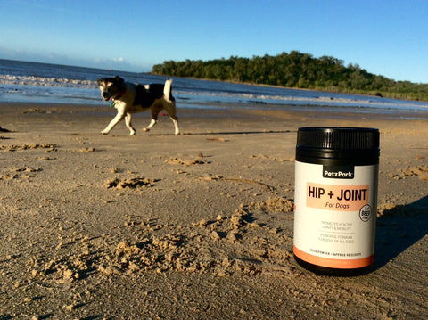 petz park hip and joint supplements for dogs