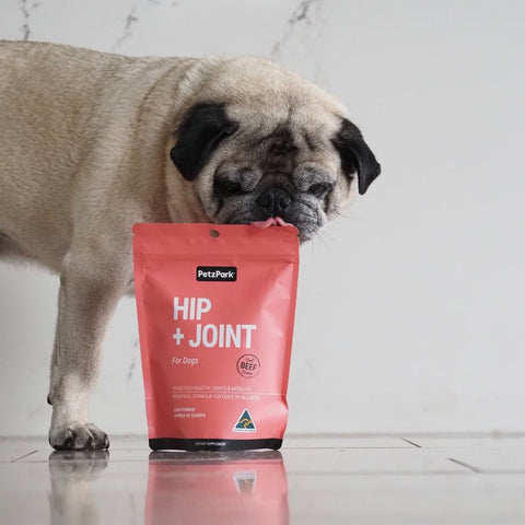 hip and joint for dogs pug