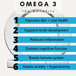Promotes heart health and reduces inflammation, benefits of skin and health and ingredients, what does omega 3 do for dogs