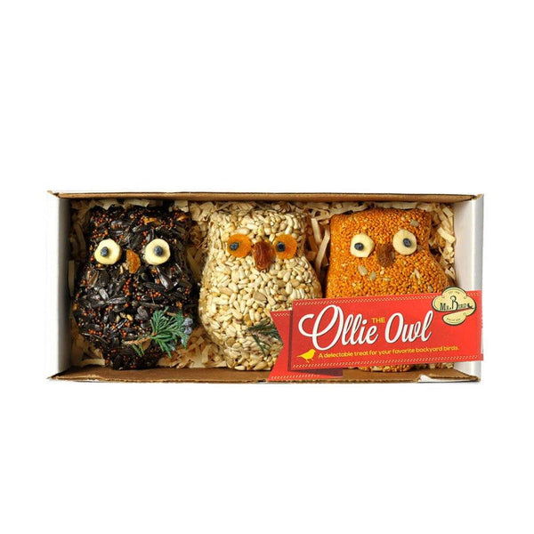 Mr. Bird : Ollie the Owl – 3 Pack
