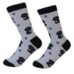 Black Labrador Socks
