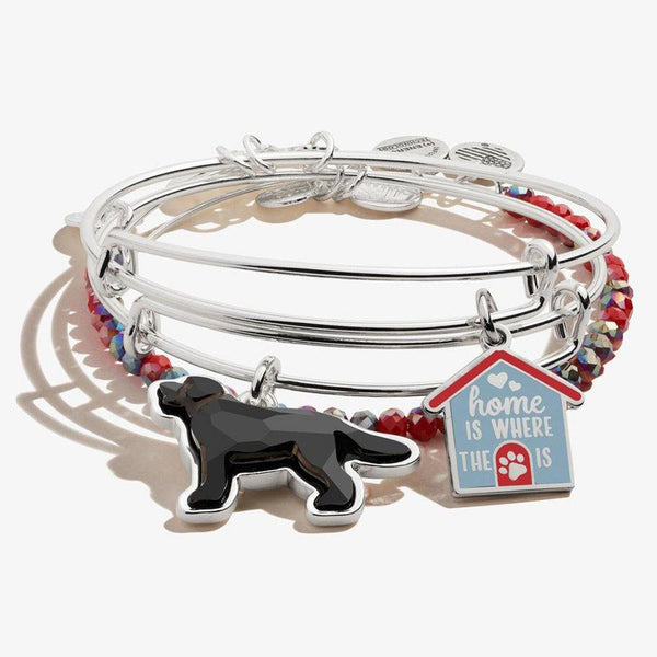 ALEX AND ANI : 'Home is Where the Paw is' Doghouse Charm Bangles, Set of 3