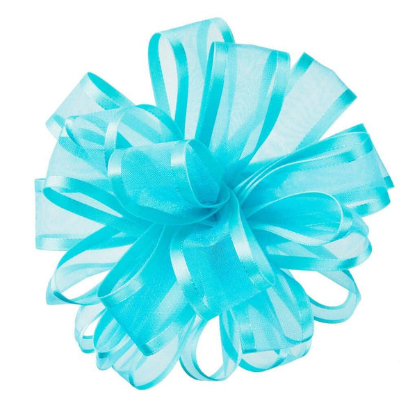 Hallmark : Aqua Sheer Ribbon Gift Bow, 4.6""