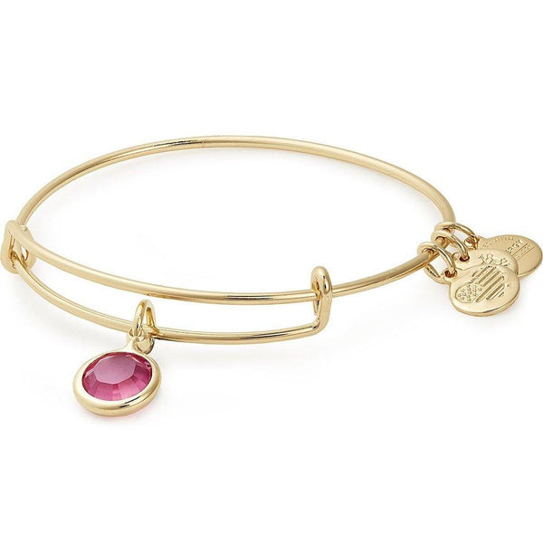 ALEX AND ANI : Birth Month Swarovski Charm Bangle in Shiny Gold - October