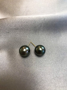 Tara - Tahiti Salt Water Pearl Earring Studs with 18K Solid Gold