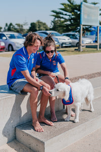 CLASSIC NEWCASTLE JETS LADIES POLO 19/20 - [everything-football].