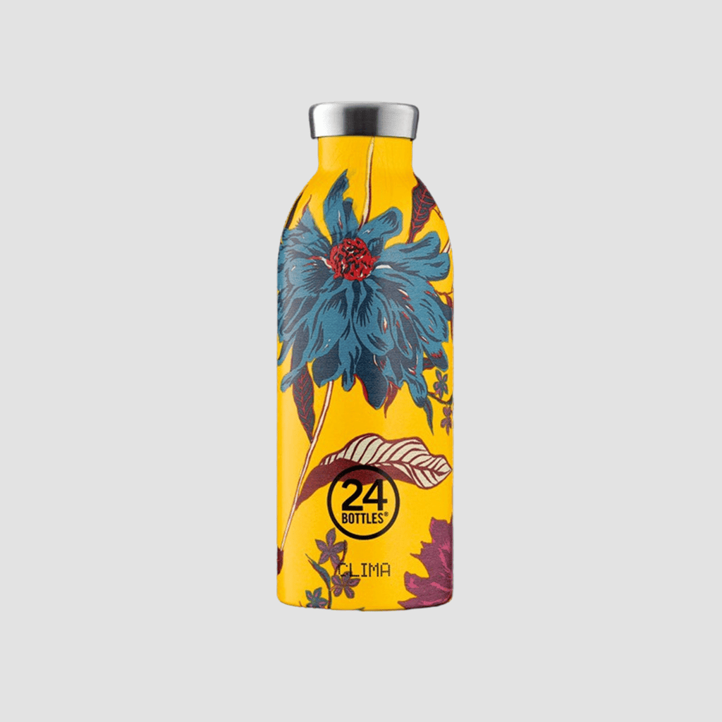 Clima Bottle 050 Aster