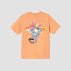 T-Shirt Design Group 21 Peach